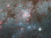 Zoom 4: Massive Star Cluster